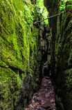 Green Caves Stock Images