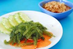 Green caviar seaweed Stock Photography