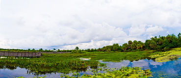 Green Cay Wetlands Panorama. A panoramic shot of the florida everglades, taken in Green Cay wetlands in Delray florida royalty free stock photo