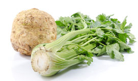 Green celery and celery root. On white Stock Photos