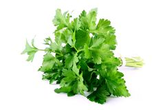 Green celery isolated on white background Royalty Free Stock Photography