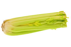 Green Celery Stock Photo