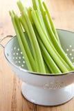 Green celery sticks in colander Stock Photo