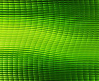 Green cells background Stock Images
