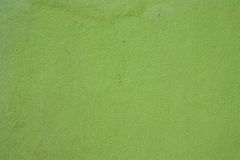 Green cement wall background Royalty Free Stock Photos