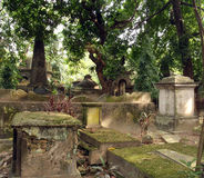 Green cemetery. Historical green cemetery with trees stock photography