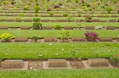 Green Cemetery Stock Photo