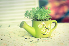 Green ceramic vase with  plant leaves Royalty Free Stock Image