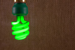 Green CFL Light Bulb Close-up Royalty Free Stock Photography