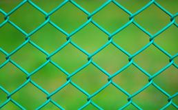 Green chainlink fence. With grass in the background Royalty Free Stock Photo
