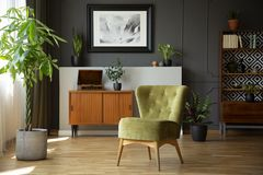 Green chair next to plant in grey living room interior with poster above wooden cabinet. Real photo. Concept royalty free stock photography