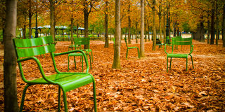 Green chairs on autumn falling leaves Royalty Free Stock Image