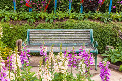 Green chairs in the garden. Royalty Free Stock Image