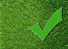 Green Check Mark. On grass background, correction concept royalty free stock photos