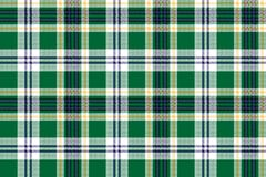 Green check tartan fabric texture seamless pattern. Vector illustration Royalty Free Stock Images