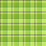 Green checks. Vector cloth and fashion checks vector illustration
