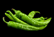 Green chili pepper Stock Photography