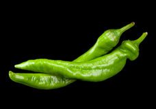 Green chili pepper Royalty Free Stock Photos