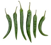 Green chili pepper. Path isolated stock photos