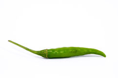 Green chili pepper. Stock Images