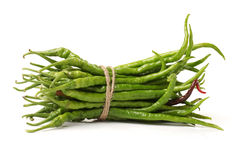 Green chili pepper Stock Images