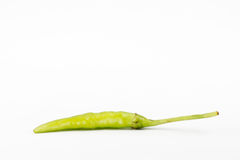 Green chili pepper on white background Royalty Free Stock Images