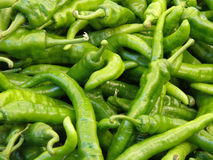 Green Chili Peppers. Ripe green chili peppers in a farm stand Stock Image