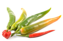 Green chili peppers and scotch bonnet Stock Photo