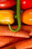 Green chili peppers , sweet peppers , carrots and tomatoes. Healthy food. Fresh vegetables from the garden Stock Photography