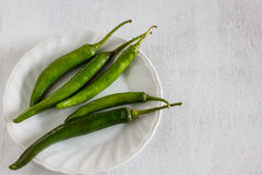 Green chili Royalty Free Stock Photos
