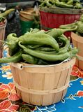 Green Chilies Royalty Free Stock Images