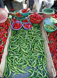 Green Chilli Stock Images