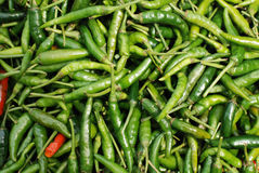 Green chilli Royalty Free Stock Image