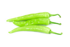 Green chilli isolated on white background Royalty Free Stock Photo