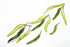 Green Chilli pepper Royalty Free Stock Photography