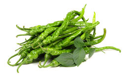Green chilli peppers Stock Photography