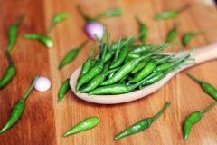 Green Chilli peppers on wooden spoon. Fresh and hot stock photography