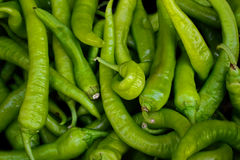 Green chili pepper. Green chillies from the areas of asia Royalty Free Stock Image
