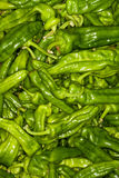 Green chillies background. Pile Stock Photo