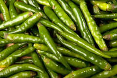 Green Chillies Close Up Stock Image