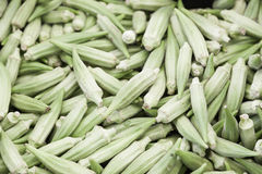 Green chillies in a market Royalty Free Stock Images