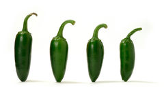 Green Chillies Panorama Royalty Free Stock Photo