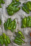 Green chillies on sale in a market Royalty Free Stock Photography