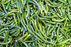 Green chillies for sale at market Stock Photography