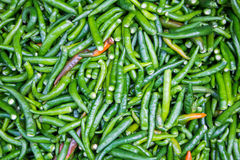 Green chillies for sale at market Royalty Free Stock Photos