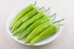 Green chills pepper Stock Photos