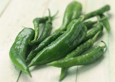 Green chilly pepper isolated on white Stock Photos