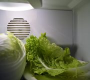 Green chinese salad in fridge Stock Photos