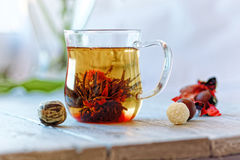 Green chinese tea flower bud blooming in glass tea cup. Morning breakfast. shallow depth of field Royalty Free Stock Photo