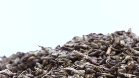 Green Chinese teas stock video